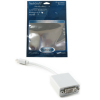 PLATINUM Mini DisplayPort Male to DVI Female Adapter